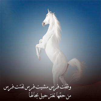 صورة صور خيول وعليها كلام اشعار