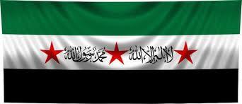 بالصور علم سوريا الجديد 20161111 3